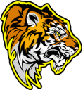 Tarsonis City Tigers